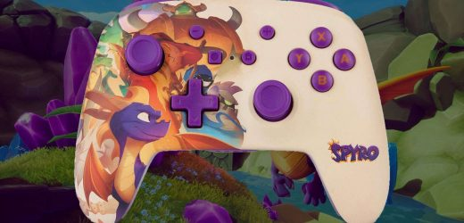 Spyro's Nintendo Switch Controller Is Cute As Heck