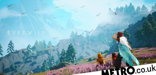 X019 event reveals new Rare game Everwild and Dontnod's Tell Me Why