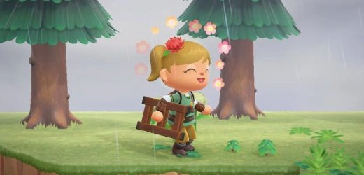 Animal Crossing Ladder: How to get the ladder and climb cliffs in New Horizons?