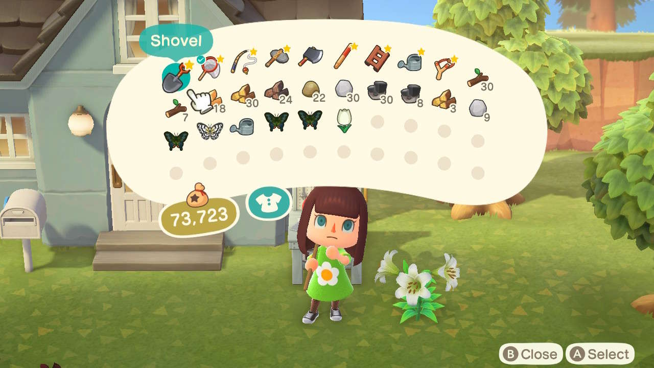 Animal Crossing: New Horizons — Increase Inventory Space Guide