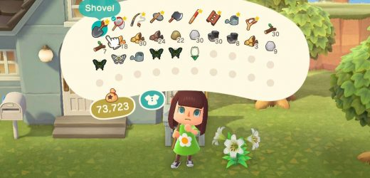 Animal Crossing: How To Expand Inventory Space In New Horizons