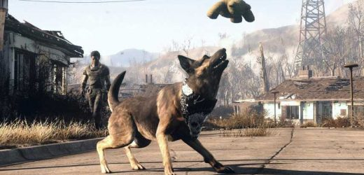 Dogmeat Might Be Coming To Fallout 76
