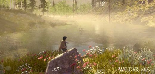 New iOS Game, Wilderless, Lets You Explore The Great Outdoors At Home