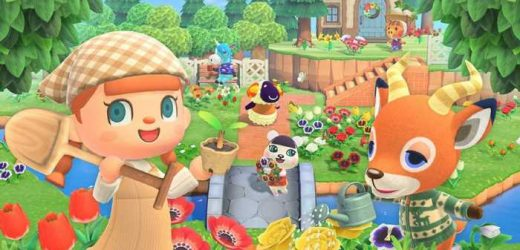 Players Are Losing Their Minds Over The Puns In Animal Crossing