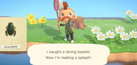 Animal Crossing: New Horizons – How To Catch The Diving Beetle