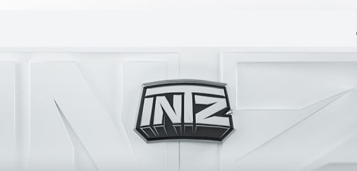 Brazilian Organization INTZ Looking for New Investment