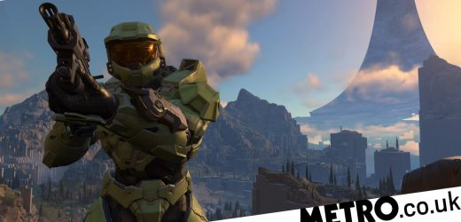 Xbox Games Showcase every new game rated: Halo Infinite, Fable, Forza, and more