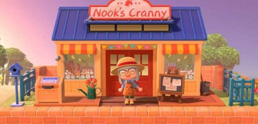 Animal Crossing: New Horizons Fans Create Adorable Nook's Cranny Cathouse