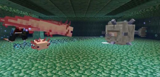 New Minecraft Axolotls Will Change Water Combat Forever