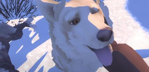 The Red Lantern Review – A Therapeutic And Immersive Adventure That Lets You Pet Dogs