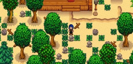 Stardew Valley: Everything You Need To Know About The Beach Farm