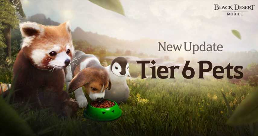 Black Desert Mobile Adds Tier 6 Pets In First Update Of 2021