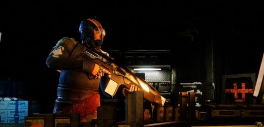 Destiny 2: Why You Should Use Chosen Of The Warmind And How To Get It