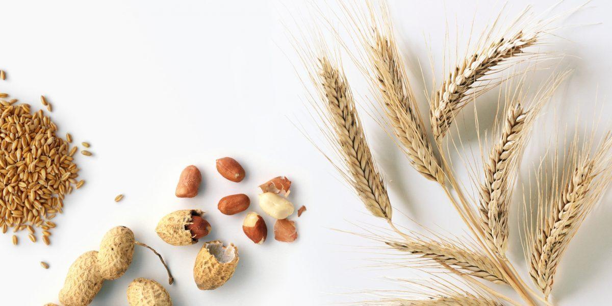 Ukko raises $40 million to address food allergies with AI