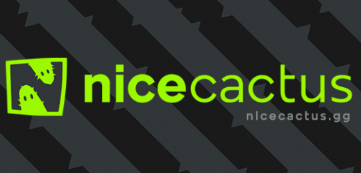 Nicecactus: Connecting with an audience of digital natives – Esports Insider