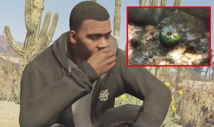 GTA Peyote locations: How to find all Peyote Plants in GTA 5 Online