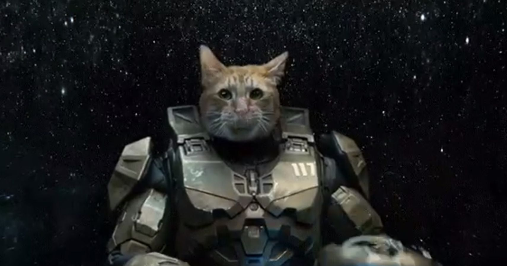 Halo Reveals Master Chief's Face (And He's A Cat)