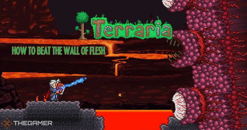 Terraria: How To Defeat The Wall Of Flesh