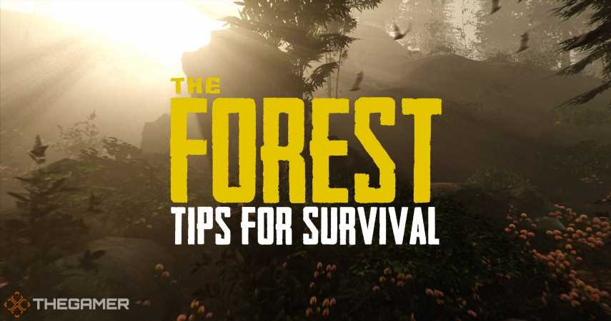 The Forest: Beginner Tips For Survival