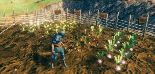 Valheim guide: Planting seeds and farming