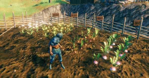 Valheim guide: Planting seeds and farming