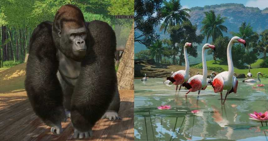 Planet Zoo: 11 Most Popular Animal Attractions (& 4 Least Popular)