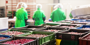 Food supply traceability startup iFoodDS nabs $15M