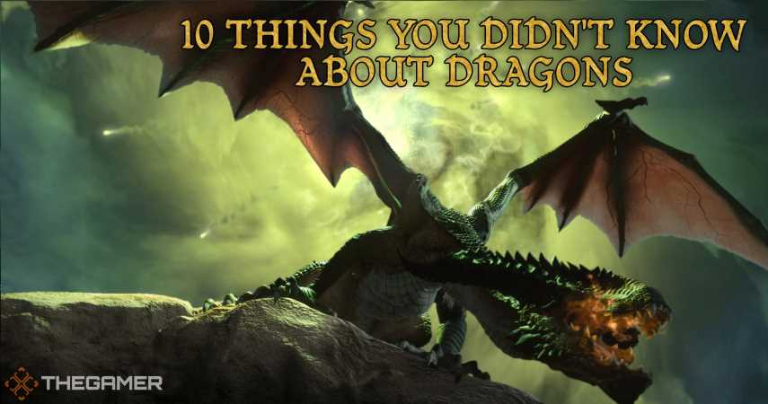 Dragon Age: 10 Things You Didn't Know About Dragons