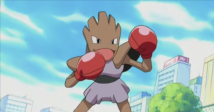 Which Pokemon Would Win In A Fight?