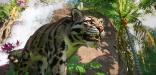 Planet Zoo Expands Further With Southeast Asia Pack And Free 1.5 Update