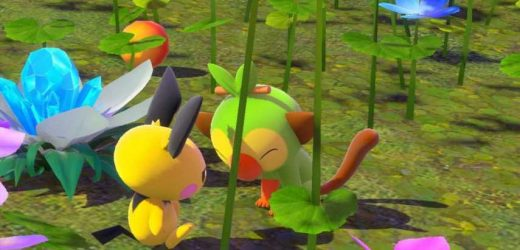 New Pokemon Snap: Every Pokemon In Florio Nature Park (Day)