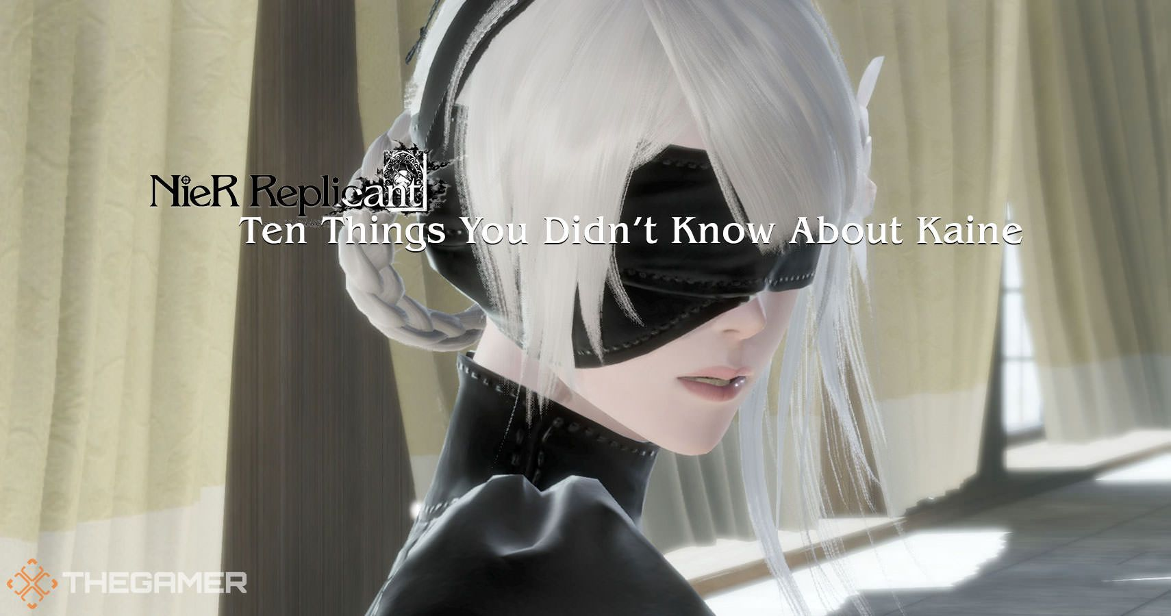 Nier Replicant: 10 Things You Didn't Know About Kaine