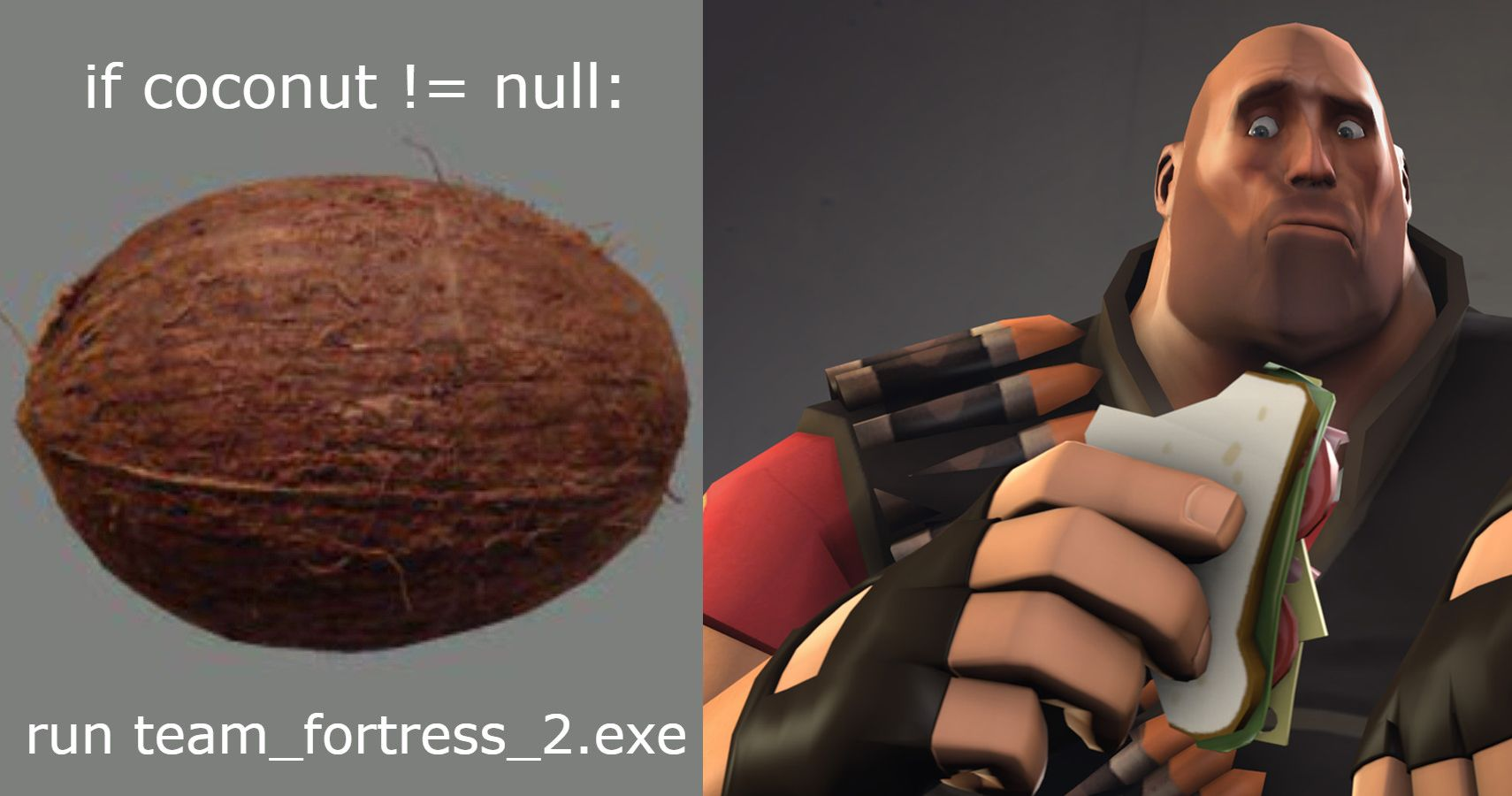 This Coconut JPG In Team Fortress 2's Game Files, If Deleted, Breaks The Game… And No One Knows Why