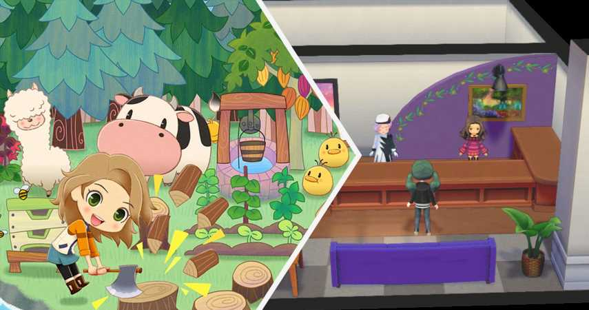 Story Of Seasons: Pioneers Of Olive Town – Guide To Treasure Appraisals