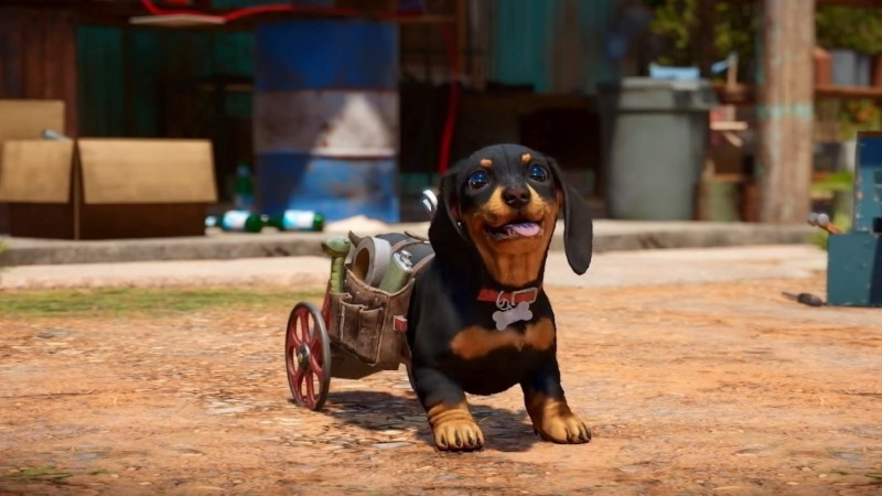 You Can Fight Alongside A Cute Weiner Dog Or A Vicious Crocodile In Far Cry 6
