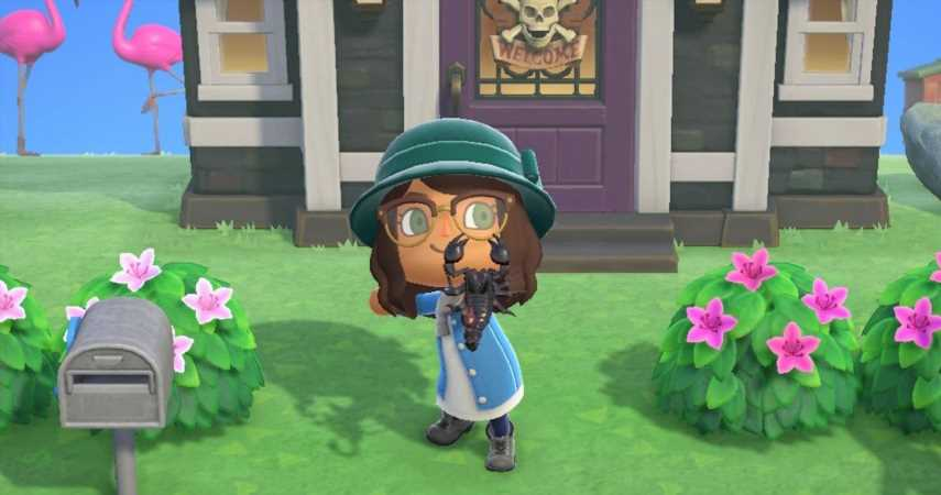 Animal Crossing: How To Turn A Mystery Island Into A Scorpion Farm